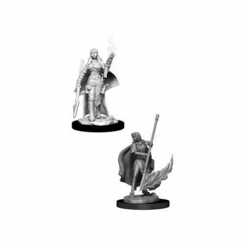 WizKids WZK90044 Pathfinder Deep Cuts & Female Human Oracle W11 Miniature Perspective: front