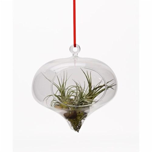 Athenas Garden LO-HCH0305-2APS-1APM-L -PRSM-MIX Raindrop Glass Terrarium Ornament Set Perspective: front