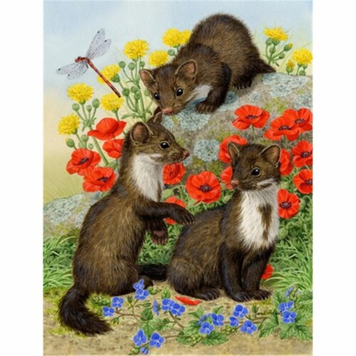 Stone Martins Beech Marten Flag Canvas House Size Perspective: front