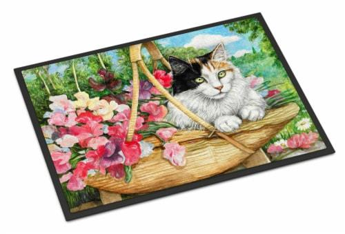 Carolines Treasures  CDCO0178MAT Cat In Basket Indoor or Outdoor Mat 18x27 Perspective: front