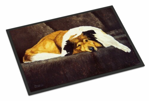 Collie by Tanya and Craig Amberson Indoor or Outdoor Mat 24x36 Perspective: front