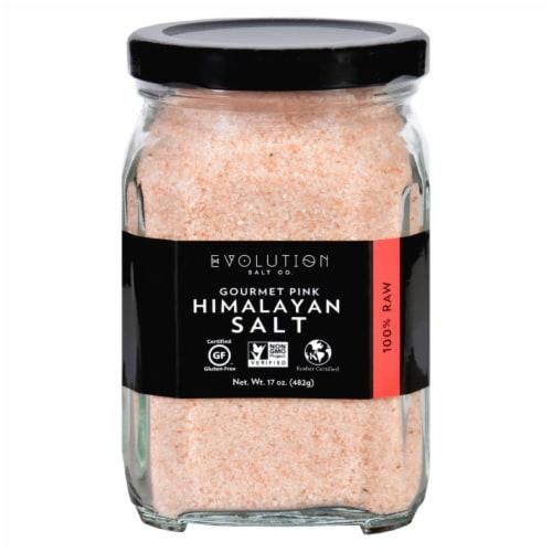 Evolution Salt Gourmet Salt - Fine - 17 oz - Pack of 3 Perspective: front