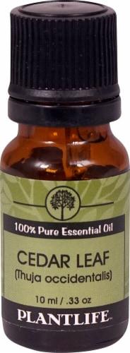 Plantlife 100% Pure Essential Oil Cedar Leaf Perspective: front