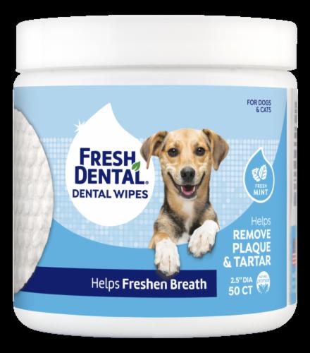 Naturel Promise Fresh Dental Fresh Mint Dog & Cat Dental Wipes Perspective: front