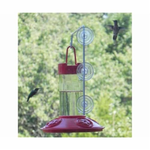 Songbird Essentials Dr. JBs 16 oz Hummingbird Feeder All Red with Hanger Perspective: front