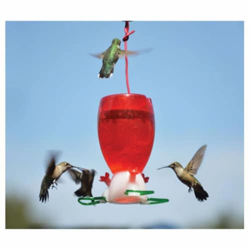 Songbird Essentials Big Red Hummingbird Feeder Perspective: front