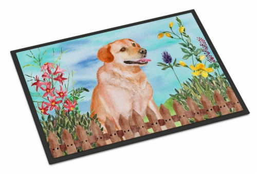 Labrador Retriever Spring Indoor or Outdoor Mat 24x36 Perspective: front