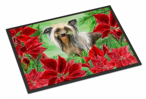 Chinese Crested Poinsettas Indoor or Outdoor Mat 24x36 Perspective: front