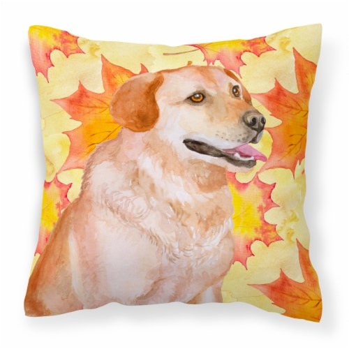 Labrador Retriever Fall Fabric Decorative Pillow Perspective: front