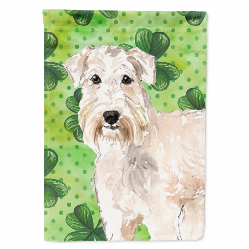 Carolines Treasures  CK1783CHF Shamrocks Wheaten Terrier Flag Canvas House Size Perspective: front