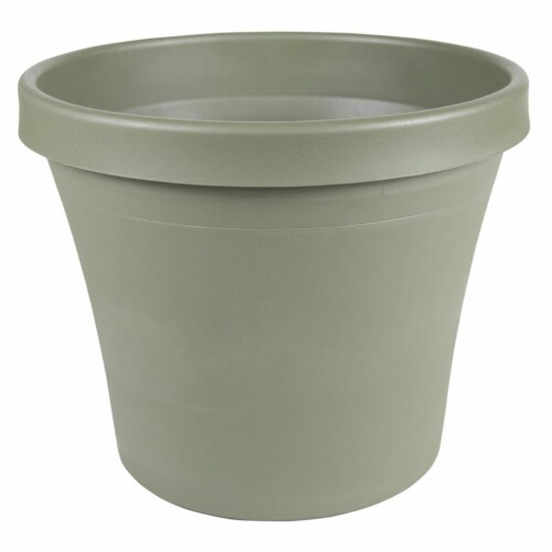4 in. Terra Pot Planter, Living Green Perspective: front