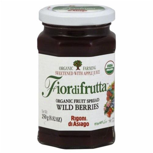Rigoni Di Asiago Fiordifrutta Wild Berries Organic Fruit Spread Perspective: front
