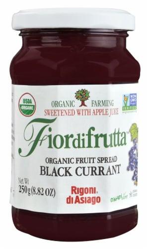 Rigoni di Asiago Fiordifrutta Organic Fruit Spread - Black Currant Perspective: front