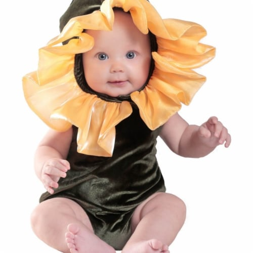 Prin5500 280686 Baby Anne Geddes Flower Costume, 18 Months-2T Perspective: front