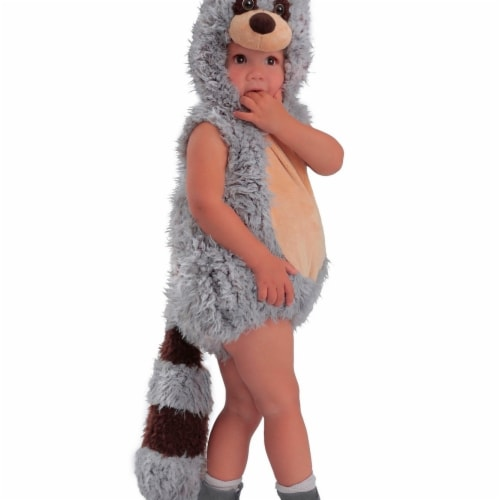Princess 407776 Child Ryder the Raccoon Costume - Toddler Perspective: front
