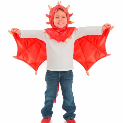 Princess 410307 Child Hooded Liam Dragon Costume - Small & Medium Perspective: front