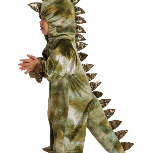 Princess Paradise 413929 2 Toddler Terrence the T-Rex Costume for Boys, 18 Month Perspective: front