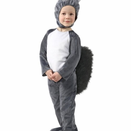 Princess Paradise 414039 Toddler Nibbles the Squirrel Costume, 6-12 Month - NS2 Perspective: front