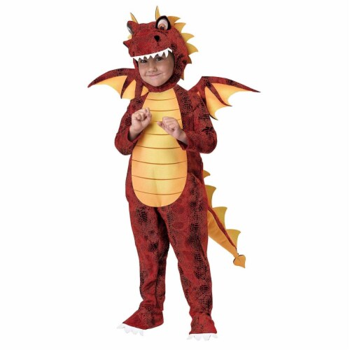 Princess Paradise 414017 Child Fuego the Dragon Costume for Boys, Small Perspective: front