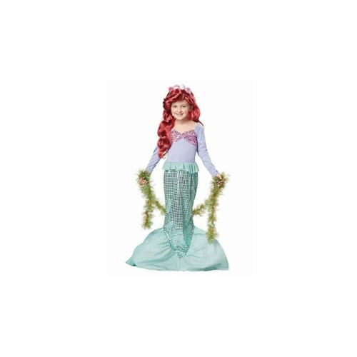 Princess Paradise 414021 Child Littlest Mermaid Costume for Girls, Medium Perspective: front