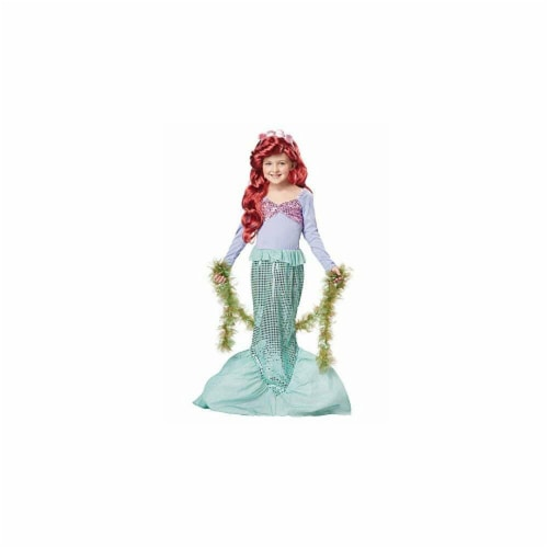 Princess Paradise 414020 Child Littlest Mermaid Costume for Girls, Small Perspective: front