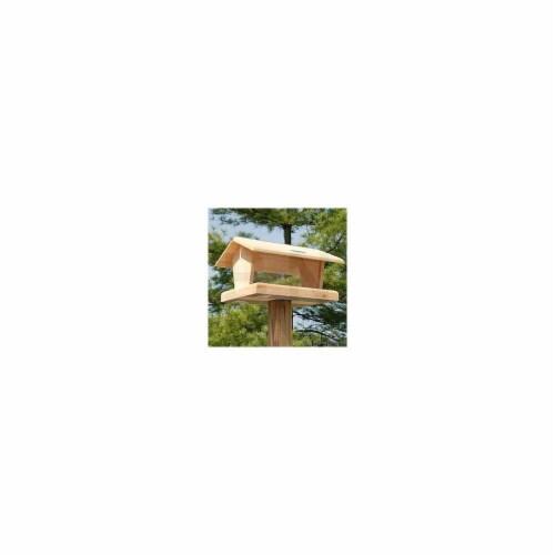 11.75'' Hopper Feeder Bird Feeding - White Pine Perspective: front
