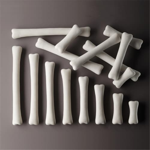 Dinosaur Bones Match & Measure Set Perspective: front