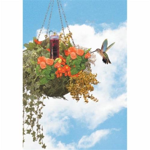 Hummingbird Basket Planter Feeder Perspective: front