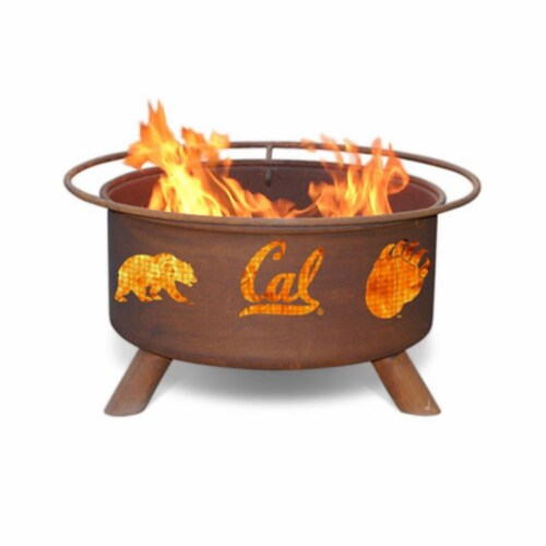 Cal Berkeley Fire Pit Perspective: front