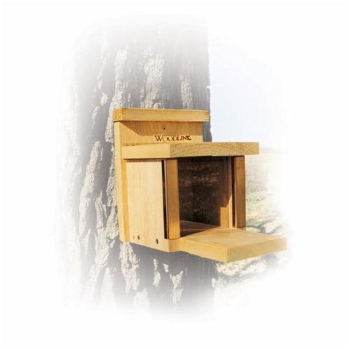 Squirrel Lunch Box Squirrel Feeder Perspective: front