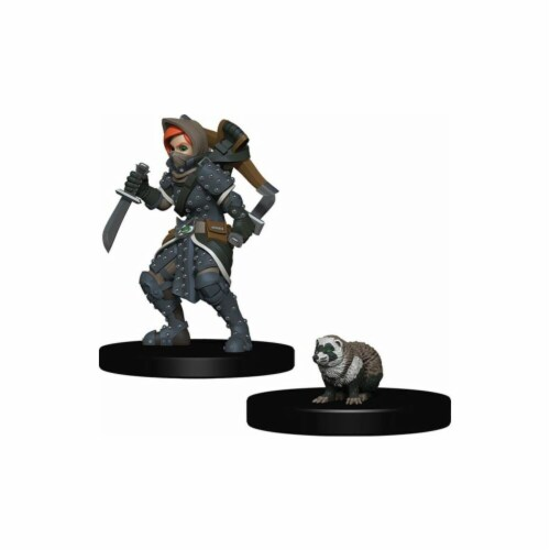 Wardlings - Girl Rogue & Badger Perspective: front