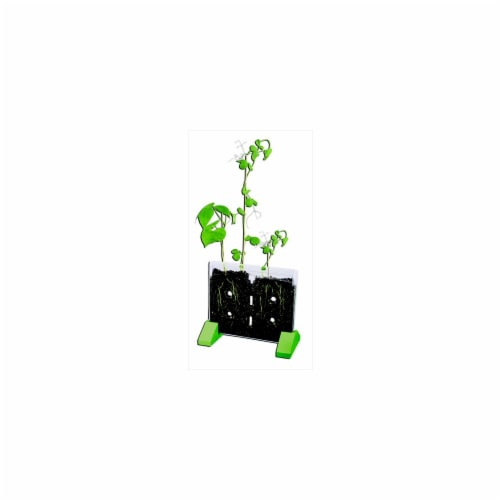 Educational Insights 070141 GeoSafari Sprout And Grow Window Kit Perspective: front