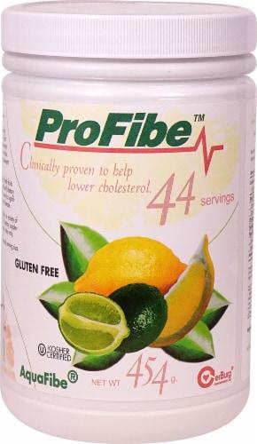 Profibe  ProFibe™ Perspective: front