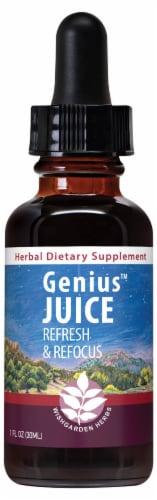 WishGarden Herbs Genius Juice Brain Food Dropper Perspective: front