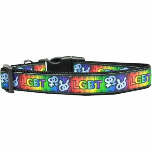 Mirage Pet Products 125-193 CT LGBT Nylon Cat Collar Perspective: front