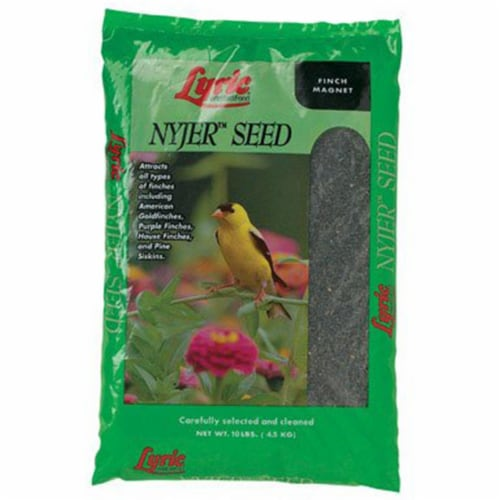 Nyjer Seed Perspective: front