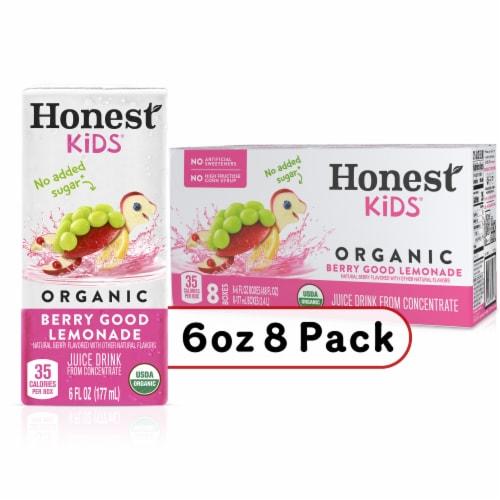 Honest Kids Organic Berry Good Lemonade Perspective: front