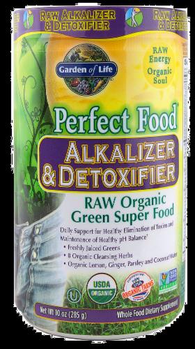 Garden of Life Perfect Food Alkalizer & Detoxifier Dietary Supplement Perspective: front