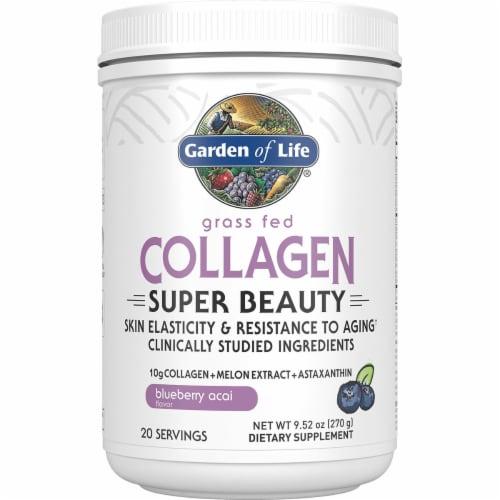 Garden of Life Blueberry Acai Flavor Grass Fed Collagen Super Beauty Dietary Supplement Perspective: front