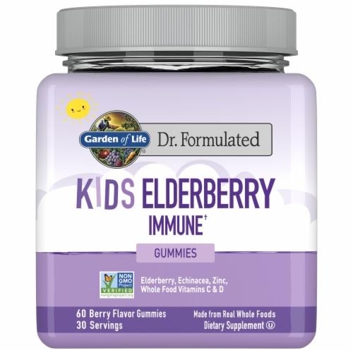 Garden of Life Dr Formulated Kids Elderberry Immune Gummies Perspective: front