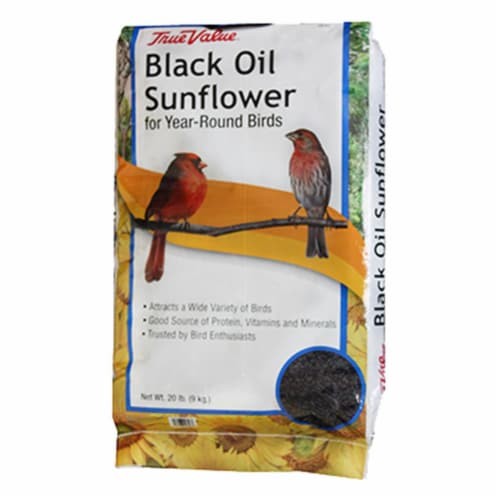 JRK Seed & Turf Supply B200020 20 lbs. Black Oil Sunflower Bird Food Perspective: front