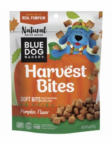 Blue Dog Bakery Pumpkin Flavor Harvest Bites Dog Treats Perspective: front