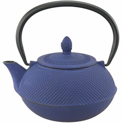 30 oz Kyusu Cast Iron Tea Pot - Blue Perspective: front