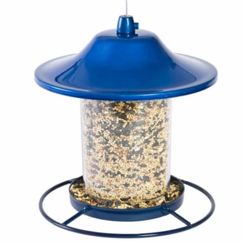 Blue Sparkle Panorama Feeder Perspective: front