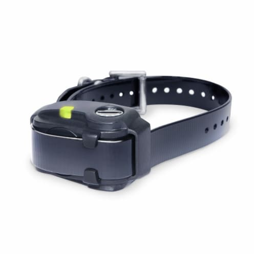No Bark Dog Collar for Smaller Dogs, Black Perspective: front