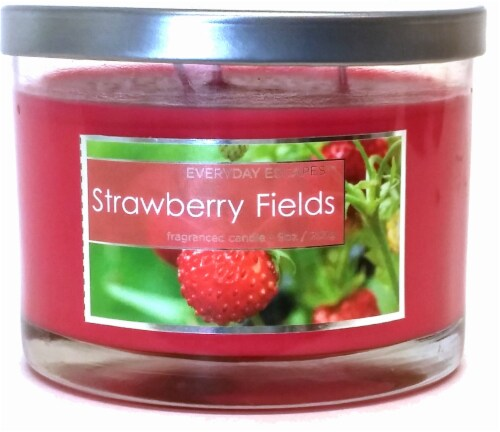 Everyday Escapes Strawberry Fields Jar Candle - 9 Ounce - Red Perspective: front