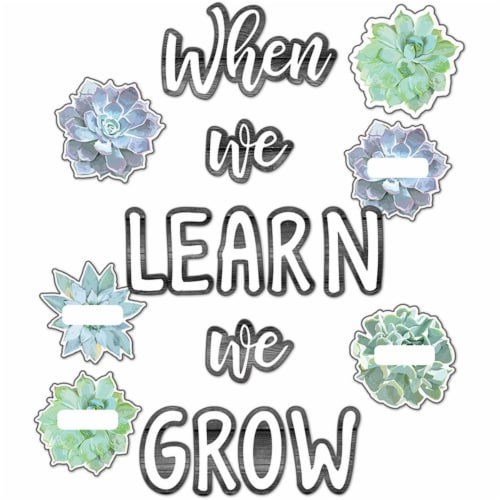 Carson Dellosa CD-110410BN Simply Stylish When We Learn We Grow Bulletin Board Set - Pack of Perspective: front