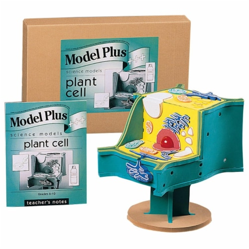 Book Plus 573124 Foam the Plant Cell Model Perspective: front