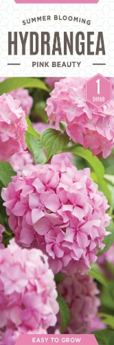 The Joy of Gardening Pink Beauty Hydrangea Seeds Perspective: front