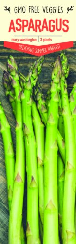 Garden State Bulb Mary Washington Asparagus Plants Perspective: front